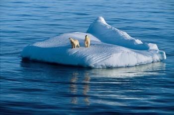 polarobsession e