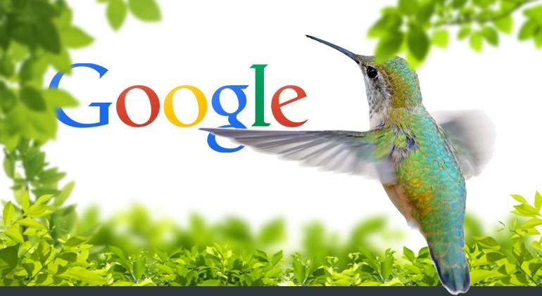 Você acha que seu site será beneficiado ou punido pelo beija-flor?