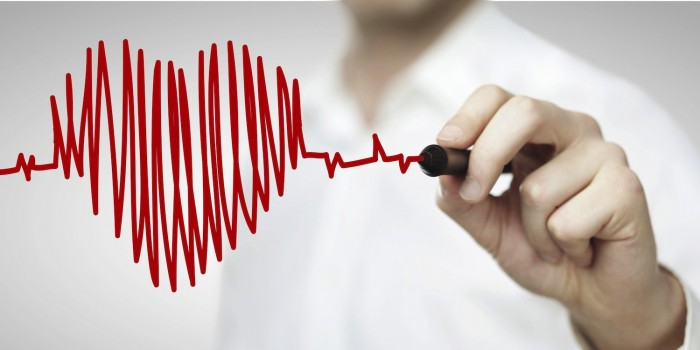 A romã possui diversos benefícios ao seu coração.